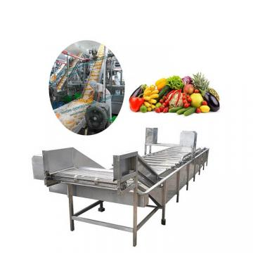Electric and Gas Instant Drying Stainless Steel Fruit Drying Oven