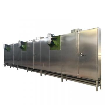 Batch Type Vegetable Fruit and Food Tray Dryer