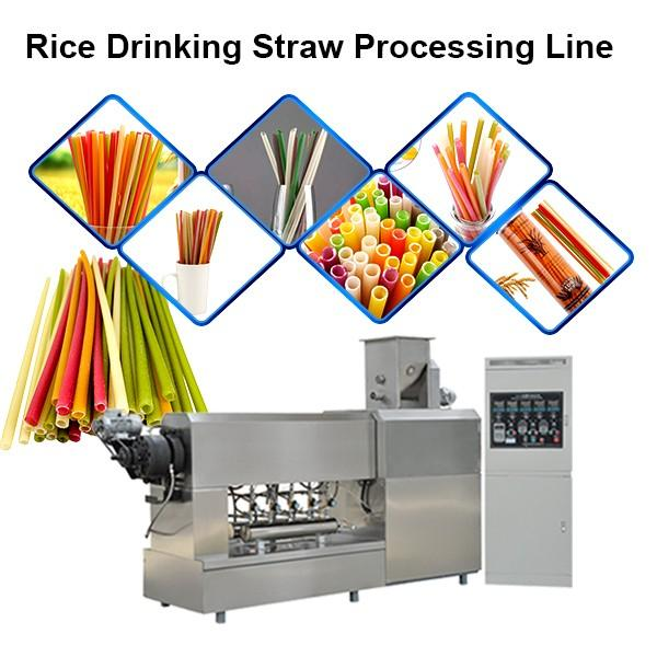 New Material Edible Straws Biodegradable Rice Tapioca Straw Making Machine