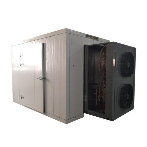 Hot Air Heat Pump Fruits Canarium Album Olive Drying Machine