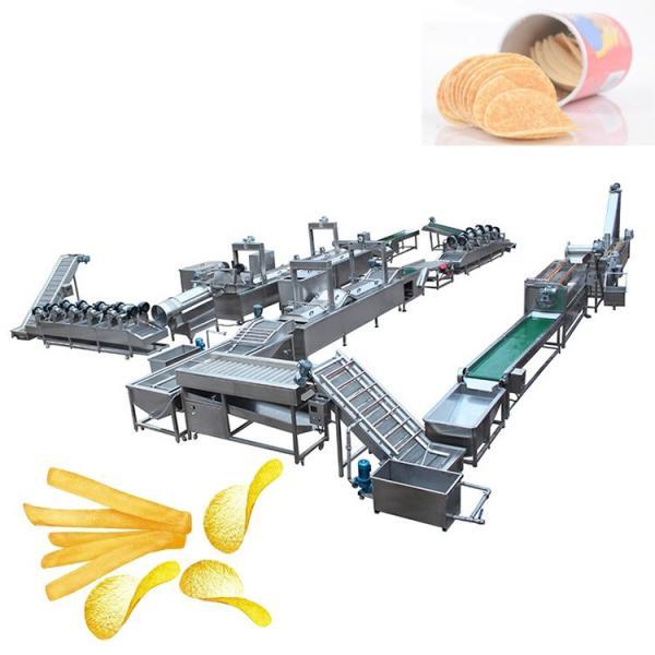 Electric Potato Vegetable Washing Peeling Potato Chips Cutting Machine Price